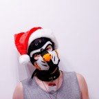 Pupplay Weihnachten Dragan